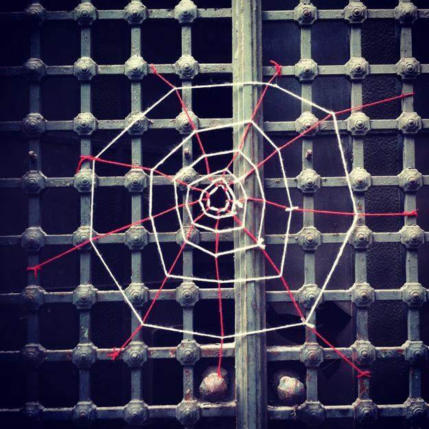 2.spider.jpg